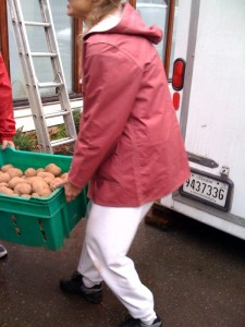 moving-potatoes-at-csa-photo